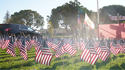 Miniature American flags on campus