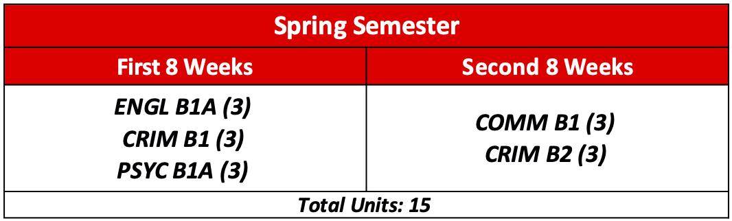 8+8 semester Snapshot