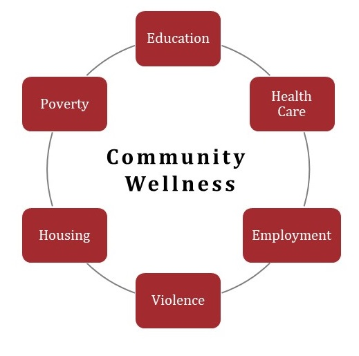Community Wellness: Education, Health Care, Employment, Violence, Housing, Poverty.