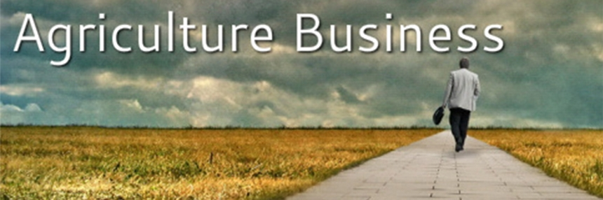Agriculture Business Header: Man walks on path through fields of crops