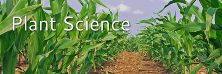 """Plant Science Header - corn crops with words """"Plant Science"""""""